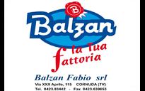 Balzan Fabio srl