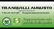 sponsor 2017/18 TRANQUILLI