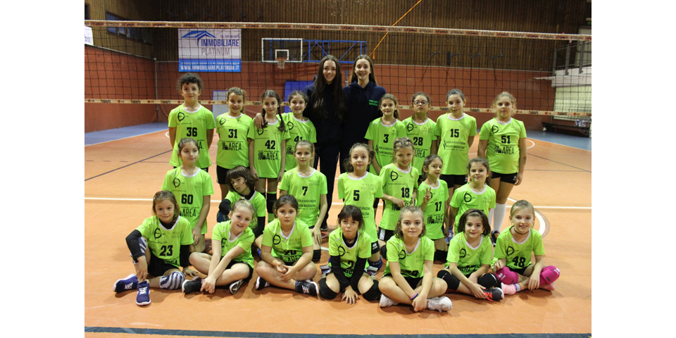 Volley S3
